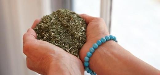Build Herbal Energy